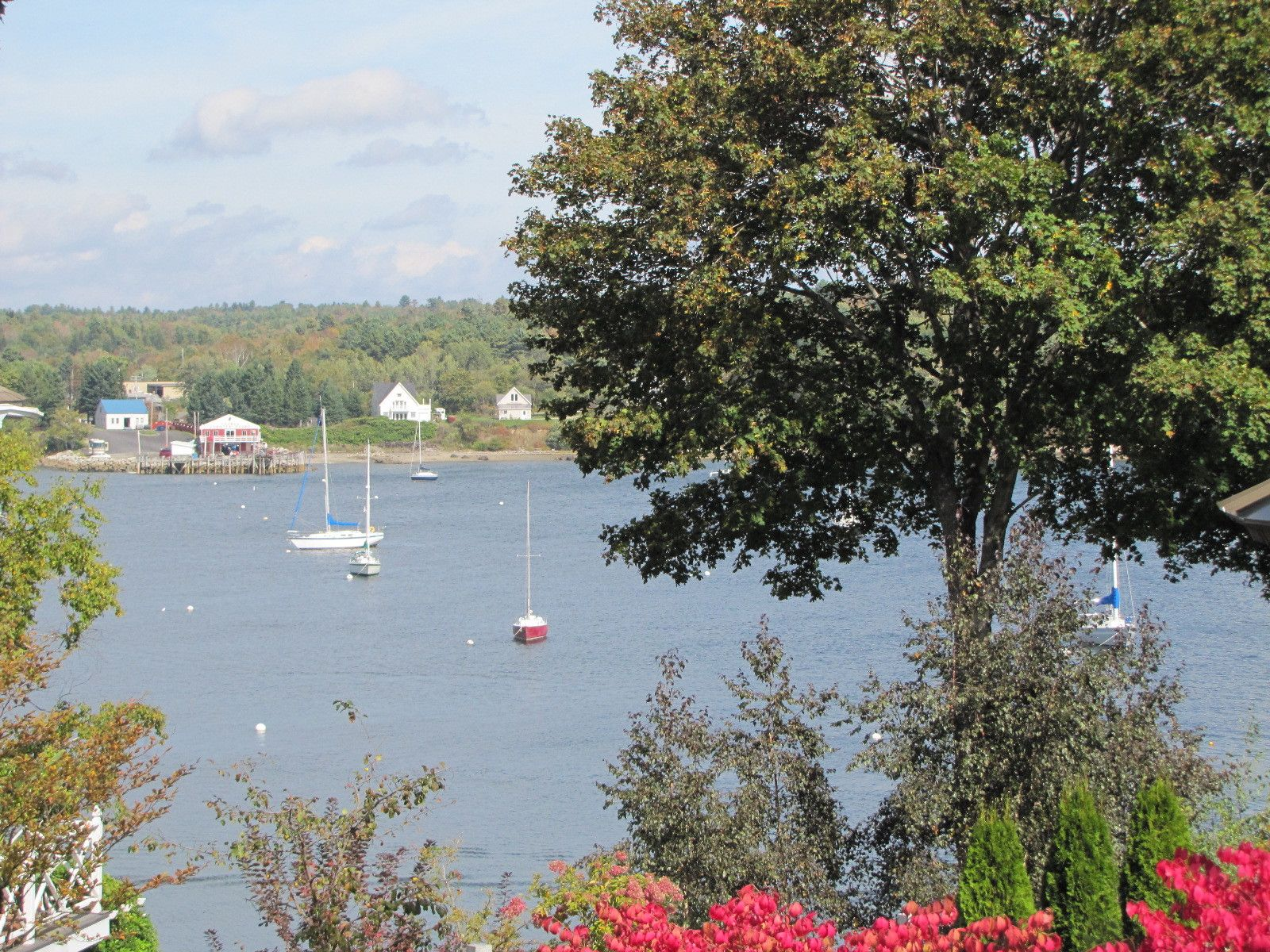 Maine Real Estate Listing - Harbor Views - Belfast Maine